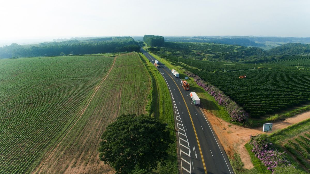 Curiosidades sobre as principais rotas de São Paulo